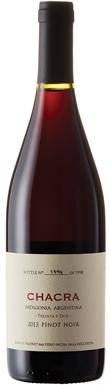 Bodega Chacra, Treinta y Dos Pinot Noir, Río Negro, Alto